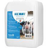 Ice mint gel grootverpakking incl. dosator - 2,5L