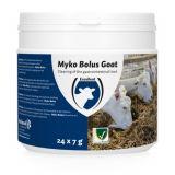 Myko bolus goat - 24 stuks